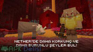 Minecraft v1.17.20.23 FULL APK  — TAM SÜRÜM / ONLİNE SERVER (MCPE/BETA) 5