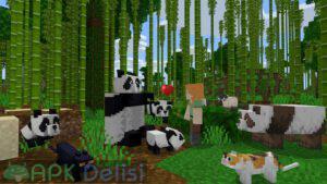 Minecraft v1.17.20.23 FULL APK  — TAM SÜRÜM / ONLİNE SERVER (MCPE/BETA) 8