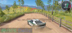 carx rally mod apk para hileli kilitler acik apkdelisi.com 5