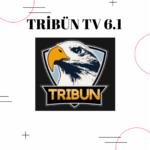 tribun tv reklamsiz apk exxen bein sports tivibu film ve dizi apkdelisi 0